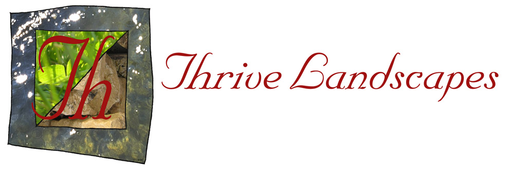 The home of Thrive Landscapes
